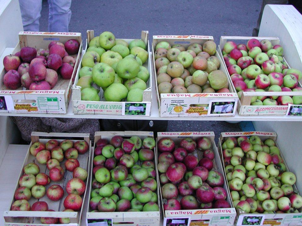 8 resurrected local varieties