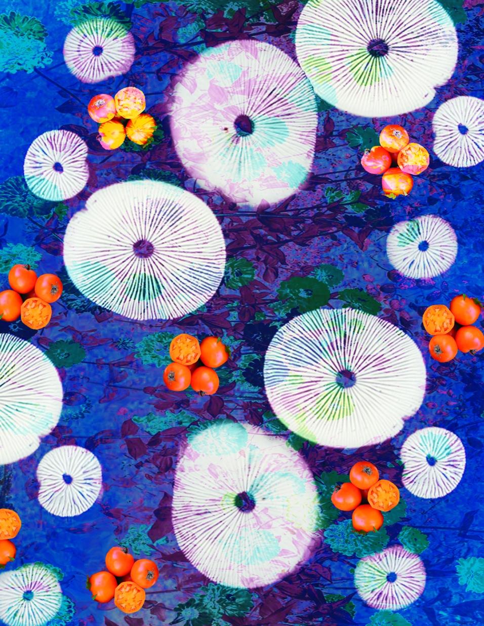 tablecloths2